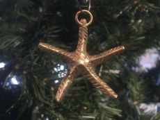 Solid Brass Starfish Christmas Ornament 4