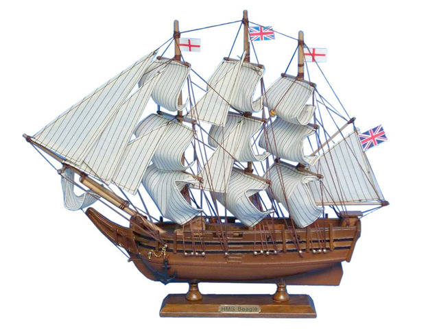 Wooden Charles Darwins HMS Beagle Model Ship 14