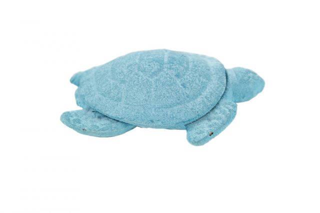 Rustic Light Blue Whitewashed Cast Iron Decorative Turtle Bottle Opener 4